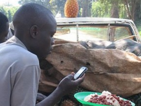 cameroon-to-set-up-mobile-based-staple-food-price-gathering-and-broadcast-system
