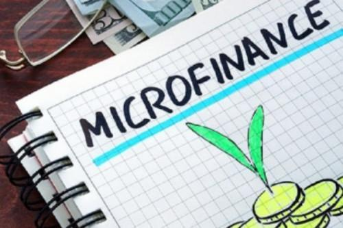 Cameroon: Microfinance institutions performed better YoY in 2019 (Ministry of Finance)