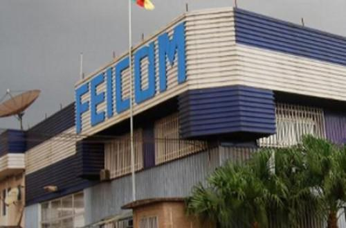 Cameroon : Feicom mobilized CFA150 billion in 2017