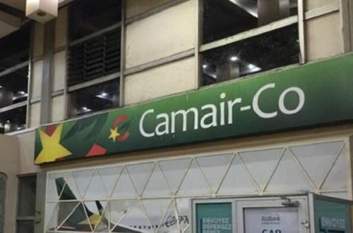 Cameroon plans to open some public companies' capital to the private sector as of 2021