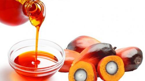Cameroon: Actual demand for palm oil exceeds 1mln tons, driven by accelerated investments by refiners