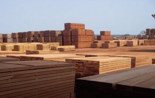 Cameroonian sawn wood exports to US grew 48% YoY in Q1 2019