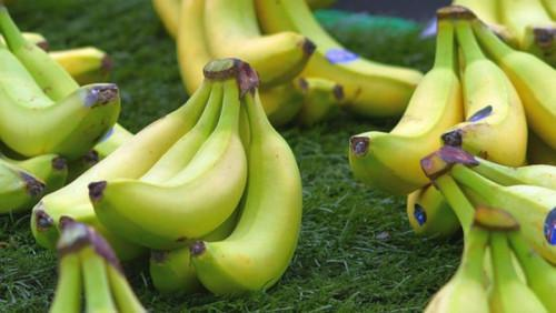 Cameroon: Banana exports up 3,817t in Q1 2019, despite CDC difficulties