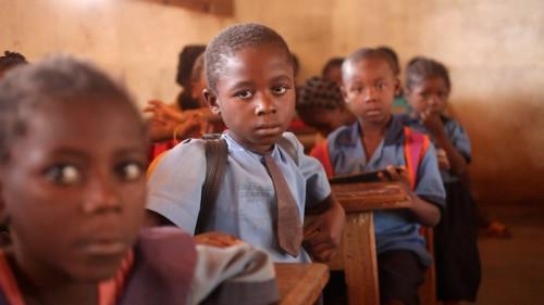 Cameroon: Number of elementary schools grew by 26.7% in 2011-17