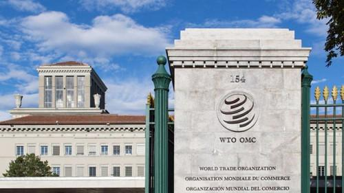 Cameroon suspended from WTO for failing to pay XAF180mln contribution
