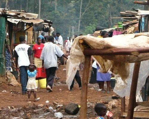 At least 8 million Cameroonians live below the poverty line, with less than XAF931 per day (INS)