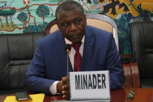 Cameroon: Government will distribute 1.4 mln of certified cassava cuttings to producers this year (MINADER)