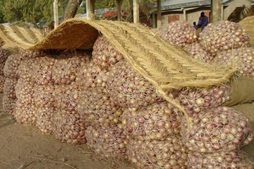 Cameroon: A 100-kg bag of onion now sold at XAF120,000 in Yaoundé, more than six times its former price