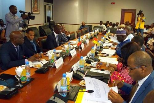 Cameroon and Chad review their joint road and energy projects