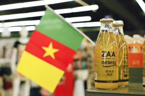 568 products made in Cameroon were eligible for CEMAC's preferential tariff regime in the last 4 years