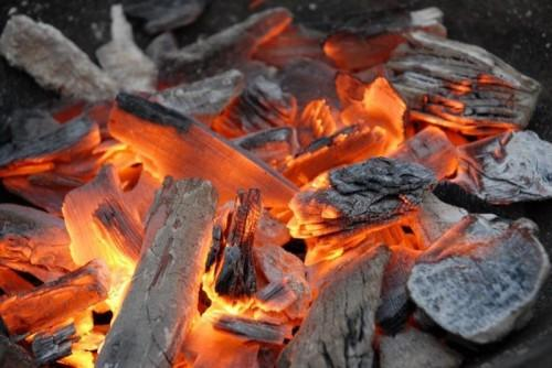Though at a budding stage, the charcoal market in Cameroon is worth FCfa 17 billion, according to the Ministry of Forestry