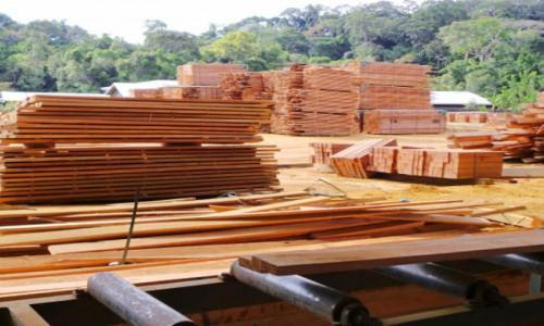Cameroonian sawn timber exports to Italy hiked 30%, year-on-year, at end-August 2018