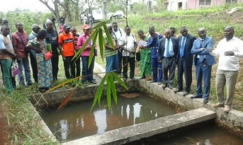 Cameroonian fish farmers set a strategy to develop national aquaculture production