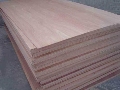 Wood: Cameroon's hardwood veneers exports to the US down 65% year to date