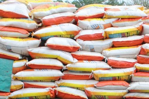 Cameroon authorizes the duty-free importation of 200,000 tons of rice to build up reserves