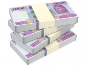 public-securities-cameroon-to-source-xaf25-bln-on-the-beac-market