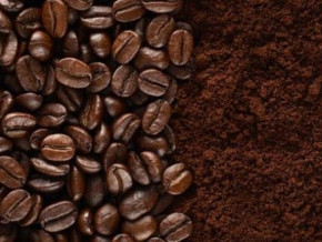 cameroon-inaugurates-a-new-coffee-processing-unit-in-the-northwest