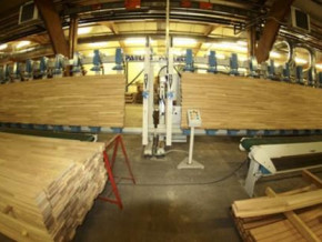 cameroon-s-plywood-exports-to-canada-rose-by-38-in-may-2019