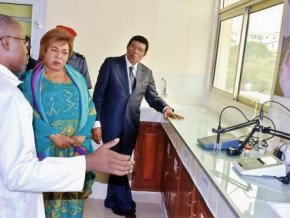 cameroon-malachie-manaouda-solicits-ministry-of-scientific-research-for-the-production-of-chloroquine