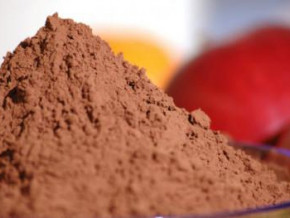cameroon-local-transformers-processed-82-7-tons-of-cocoa-in-2020-2021-down-by-12-8-tons-season-to-season