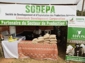 cameroon-livestock-development-corporation-sodepa-becomes-a-full-public-corporation-with-legal-personality-and-financial-autonomy