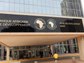 cameroon-s-economy-is-showing-early-signs-of-slowdown-afdb-reveals