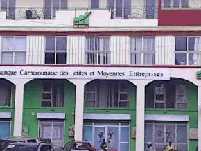 xaf12-bln-of-credit-granted-to-smes-in-2018-by-bc-pme
