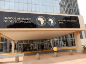 cameroon-afdb-raises-economic-operators-awareness-on-private-investment-mechanisms
