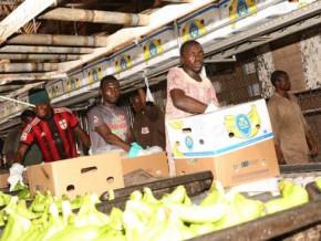 cameroon-banana-exports-down-535-tons-yoy-in-jan-2020