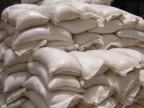 cameroon-32-tons-of-millet-seized-in-the-far-north-haunted-by-famine