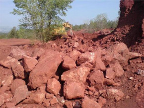 india-to-relaunch-cameroon-alumina-bauxite-mining-project