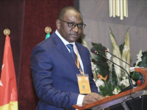 cameroon-medcem-perenco-sogea-bvs-buns-suspended-from-customs-activities-for-non-payment-of-taxes-and-default-interest-owed-to-the-treasury