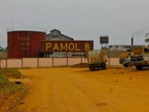 cameroon-government-spent-xfa1-2bln-to-pay-7-months-of-salary-arrears-to-pamol-staff