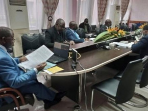 artisanal-fishing-is-not-illegal-cameroon-fights-back-at-the-wto