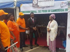 7th-edition-of-international-cameroonian-coffee-festival-opens