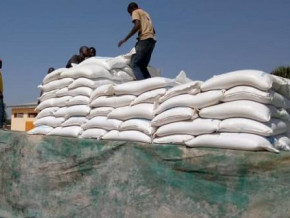 cameroon-the-national-cereals-board-announces-upcoming-sales-of-10-000-sacks-of-cereals-to-mitigate-price-rise