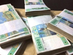 cameroon-raises-xaf121bln-in-two-fungible-treasury-bonds-issues-on-beac-market