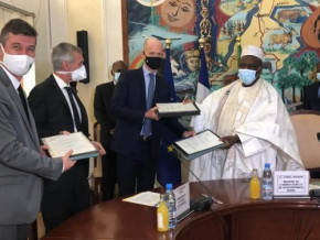 cameroon-french-firm-pallisco-to-promote-cocoa-production-around-its-forest-concessions-in-the-east