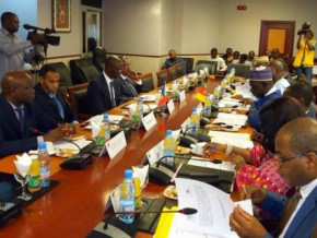 cameroon-and-chad-review-their-joint-road-and-energy-projects