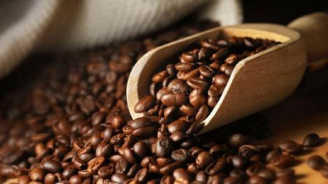 climate-change-is-the-biggest-threat-to-the-coffee-sector-says-francois-mefinja-foka-mg-of-uccao
