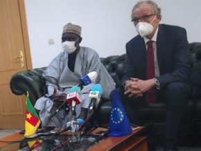 covid-19-eu-member-countries-estimate-their-support-to-cameroon-at-over-cfaf18-bln