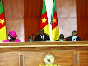 cameroon-government-submits-2021-budget-of-xaf4-865-2-bln-before-parliament