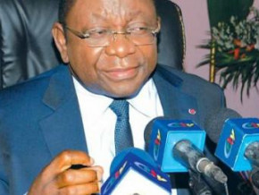 cameroonian-trade-minister-lifts-ban-on-sale-of-six-baby-diaper-brands-including-pampers