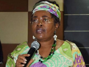 cameroon-government-steps-in-to-ease-conflict-in-telecom-regulator-art-s-management
