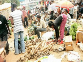 cameroon-to-adopt-a-food-security-law-to-ensure-protection-of-consumers
