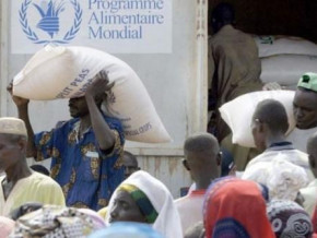 cameroon-close-to-2-7-mln-people-are-food-insecure-government