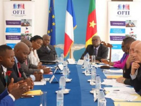 cameroon-ofii-helped-reintegrate-110-residents-who-returned-from-france