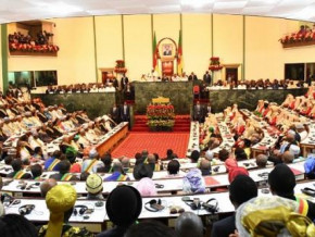 cameroon-government-submits-penal-code-amendment-punishing-tribalism-before-parliament