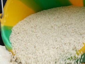 cameroon-government-and-operators-agree-on-stabilizing-fish-and-rice-prices