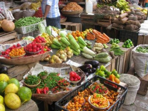cemac-agricultural-production-will-rise-in-q2-2021-thanks-to-cameroon-beac